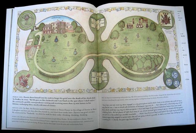 иллюстрация. книжная графика, компопозиция в иллюстрации, Т. Никитина, книжное издание