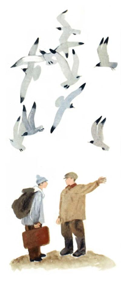 """Иллюстрации для книги С. Сахарнова """"Безногие головоногие"""":"""