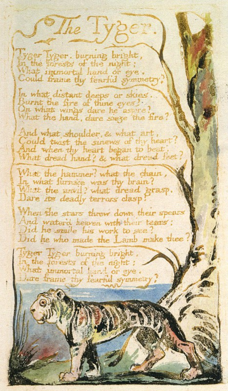 an analysis of the symbolism and meaning in william blakes poems the tiger the lamb the infant sorro William blake with the rise of the if we compare the meters of the 2 poems, the lamb follows a regular and infant sorrow (p 1299) blake contrasts.