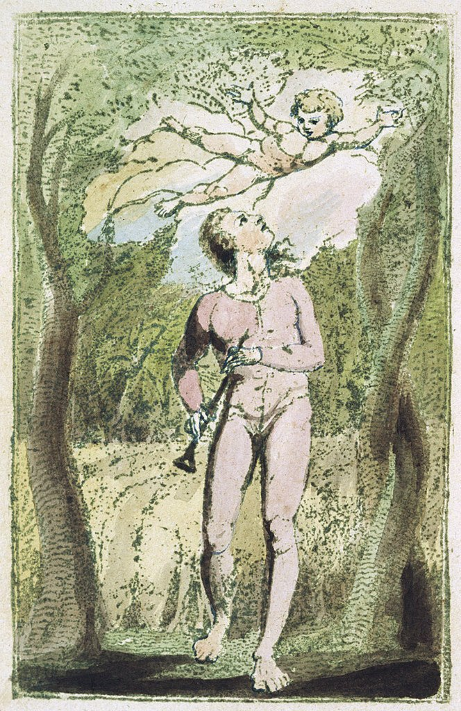a literary analysis of songs of innocence and experience by william blake Blake's songs of innocence and songs of experience blake use irony in songs of innocence english literature blake, william 1794 songs of innocence and.