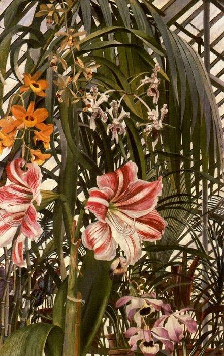 Орхидеи, лилии и пальмы