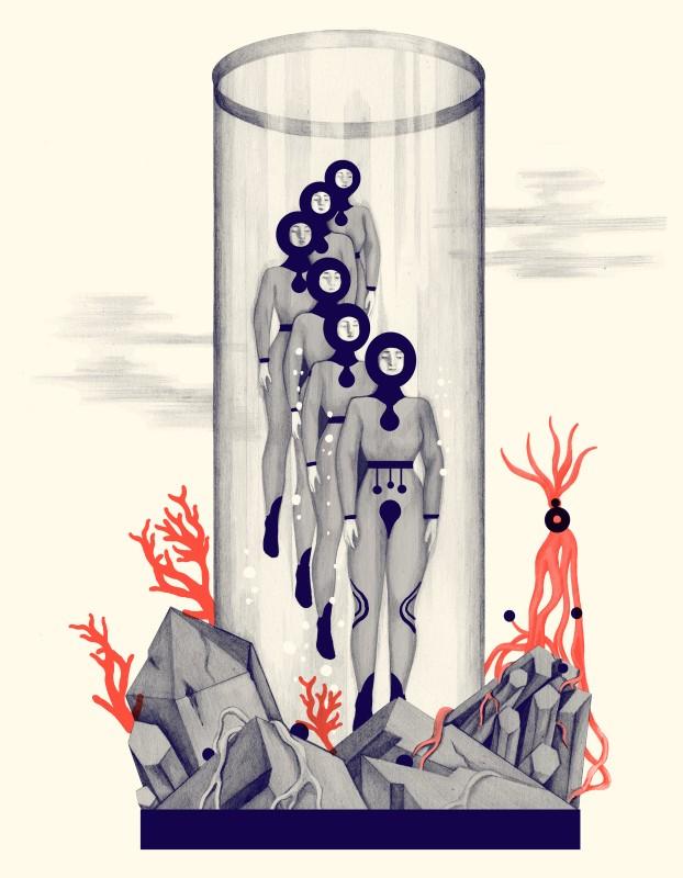 Иллюстрация для бренда Cotelac
