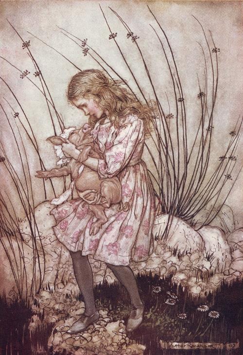 Алиса и поросёнок