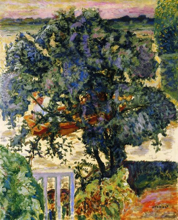 Дерево на берегу реки